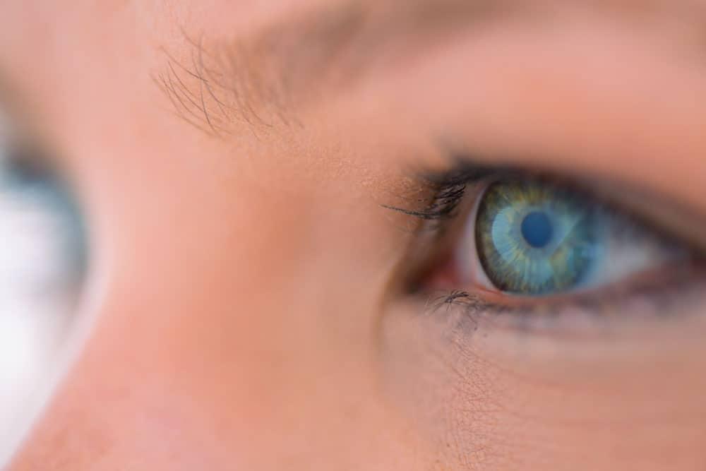 eye doctor 03
